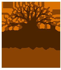 IBOGA CHURCH OF AMERICA